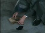 人間四月天DVD擷圖007
